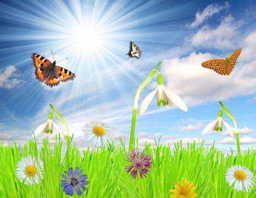 Vacances de printemps du 17 avril au 1er mai 2016